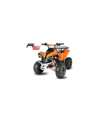 ATV BIG WARRIOR 125CC - RS MODEL - 3GR